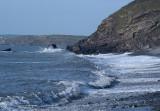 Millook Waves