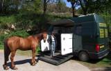 HorseBox Fuji9600