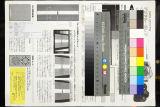 18-50mm F2.8 EX DC MACRO @50mm f/5.6
