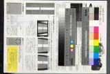 APO 50-150mm F2.8 EX DC @70mm f/5.6