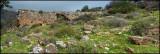 Panorama  - Farod