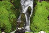 Waterfall Through Moss