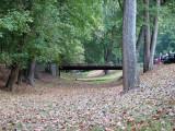 Bridge at Dargan Bend