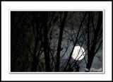 Sunrise, Sunset,  Cloud, and  Moon