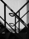 Stairs Shadow.jpg
