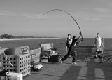 U.S. -- fishing off the pier at Venice Beach, Florida