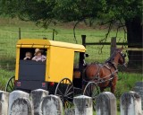 U.S. -- Amish kids in a buggy, rural Pennsylvania