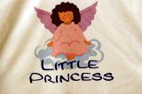 Little Princess' Diary