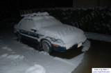 SnowNov06-001.jpg
