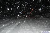 SnowNov06-002.jpg