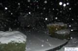 SnowNov06-003.jpg