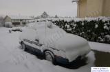 SnowNov06-004.jpg