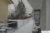 SnowNov06-005.jpg