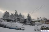 SnowNov06-006.jpg