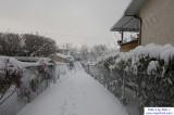 SnowNov06-011.jpg