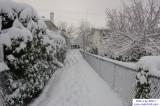 SnowNov06-012.jpg