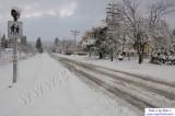 SnowNov06-015.jpg