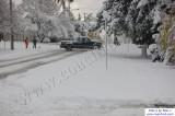 SnowNov06-017.jpg