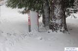 SnowNov06-018.jpg
