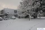 SnowNov06-022.jpg