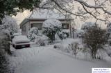 SnowNov06-024.jpg