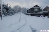 SnowNov06-029.jpg