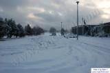 SnowNov06-037.jpg