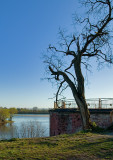 Vistula & Narew Rivers