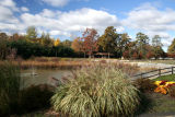 October 26, 2006Cook Park