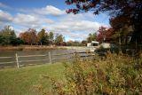 Cook Park Pond