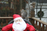 November 28, 2006Santa and Squirrels