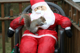 December 7, 2006Squirrel and Santa