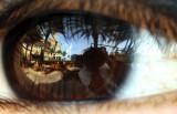 An Eye on Dubai