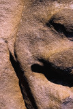 The face in the stone