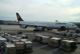 A340-313X_DAIGT_DLH.jpg