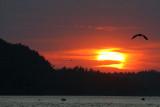 USA_ME_Bar Harbor coucher de soleil