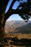 Scenery on the ascent to Asheton Maryam