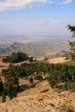 Visiting Asheton Maryam involves climbing from Lalibela (8,200 feet) to the Monestary, which lies at 10,135 feet.