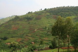 The lush green, cultivated scenery of Rwanda