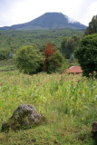 Mt. Gahinga watches over fields near the park.