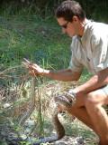 Dave, our guide, proudly shows off an African Rock Python he captured