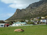 Cape Town's dramatic mountains