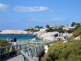 Boulders Beach -- home of an African Penguin colony