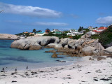 Penguins among the boulders that give the beach its name