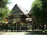 Cabins at Tahuayo Lodge