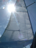 Impetuous under sail