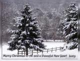 snow_scenes