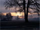 THE WINTER SUN RISES