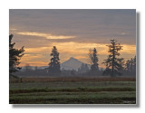THAT'S MT. HOOD IN THE DISTANCE.