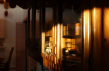 afternoon light 011